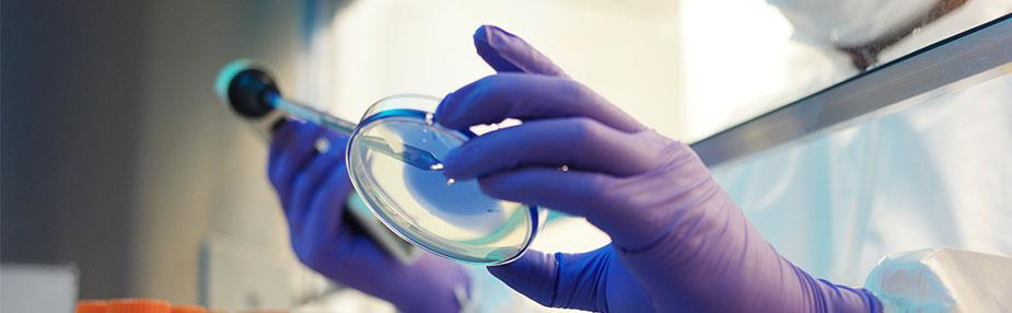 Life Sciences weekly highlights—8 July 2021